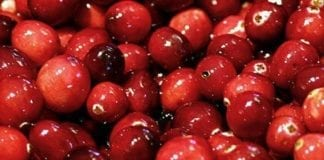 Cranberries are good when cooking with meat, as they add some acidity to the dish