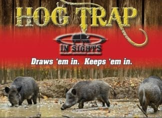 Hog Trap Attractant - In Sights Nutrition, LLC.