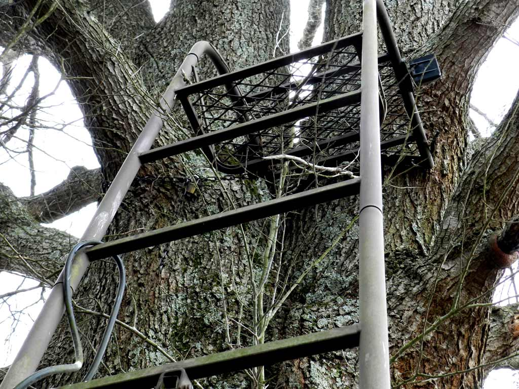 Four simple safety tips for safe tree stand use this bow for Diy hunting tree stand