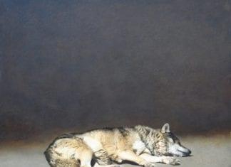 Sleeping Wolf by Marzio Tamer: An Italian Artist