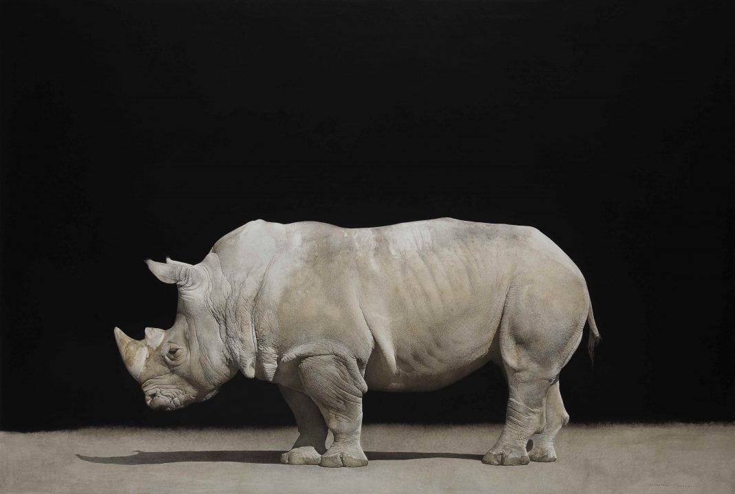 marzio tamer an italian artist who knows animals and to