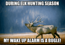 During Elk Hunting Season - My wake up Alarm is a bugle! Hunting Meme
