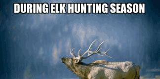 During Elk Hunting Season - My wake up Alarm is a bugle! Hunting Meme