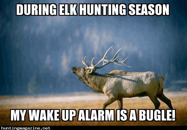 My Elk Hunting Season Alarm Clock