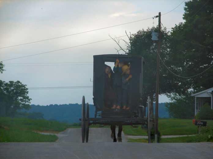 Amish with Buggy photo by Cindy Cornett Seigle