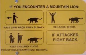 Cougar_safety_sign