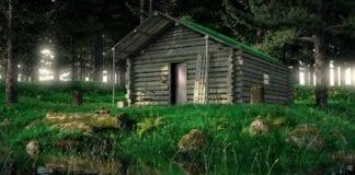 Rustic Cabin in Woods