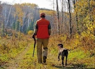 gourse hunting Minnesota