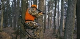 Deer Hunting in Stand