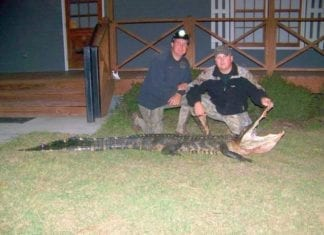 Alligator Hunting | Hunting Magazine