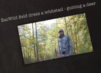 Field Dressing a Deer Video - HuntingMagazine.net