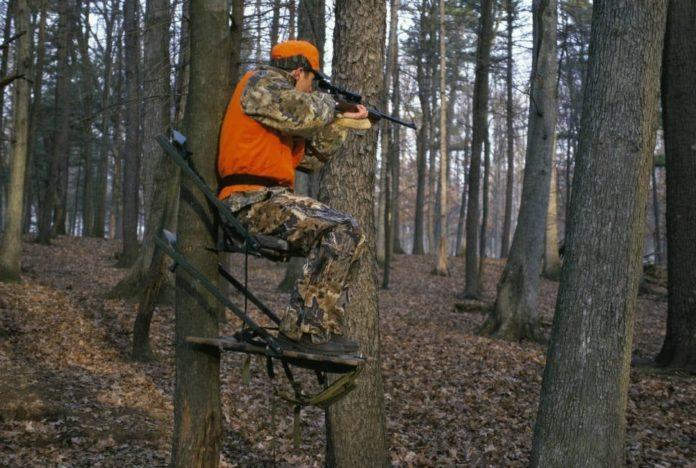 Hunter in deer stand - HuntingMagazine.net
