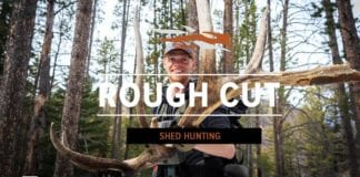 Hunting Video: Rough Cut - Shed Hunting