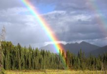 Wilderness Rainbow - HuntingMagazine.net