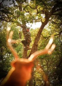 When shooting from a treestand you must take into consideration the height and angle