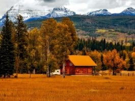 Tips for Buying Recreational Land