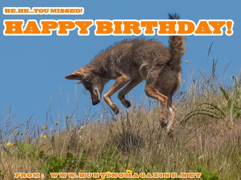 Happy Birthday Varmint Hunting Meme varmint hunting meme happy birthday from hunting magazine