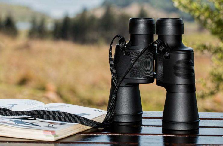 Quality Binoculars For Birdwatching