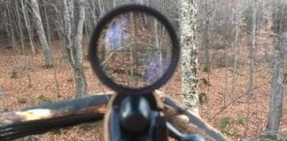 A hunting photo taken right from the deer hunting stand in Bridgewater, Maine during the November Deer Hunting Firearms Season of 2017.