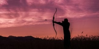 Tips for Bow Hunting - What You Should Know