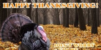 Happy Thanksgiving - I'll Bring the Turkey | Hunting Magazine