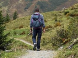 Walking and Hiking Apps for Outdoorsmen
