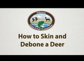 Video: How to Skin and Debone a Deer