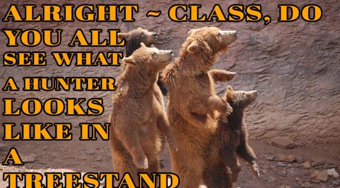 Bear hunting Meme | Hunting Magazine