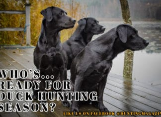 Whos ready for ducking hunting season hunting meme | Hunting Magazine
