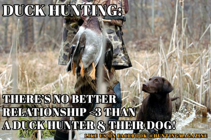 Duck Hunting Meme: There's No Better Relationship Than a Duck Hunter and Their Dog! | Hunting Magazine