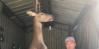 Calvin Hogg Jr shot this Red Stag While Hunting in Kountze Texas (2)