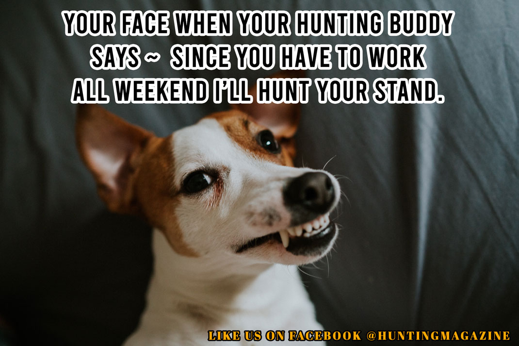 "Funny Hunting Meme: Your face when your hunting buddy says - ""Since you have to work all weekend I'll hunt your stand."""