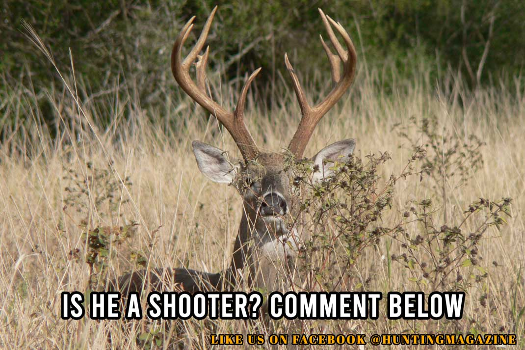 Hunting Meme - Is he a shooter? - Hunting Magazine