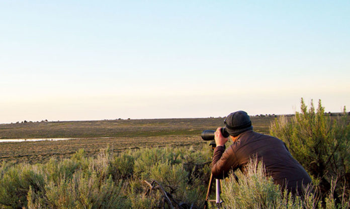 Long-distance Experiment with a Spotting Scope | Hunting Magazine