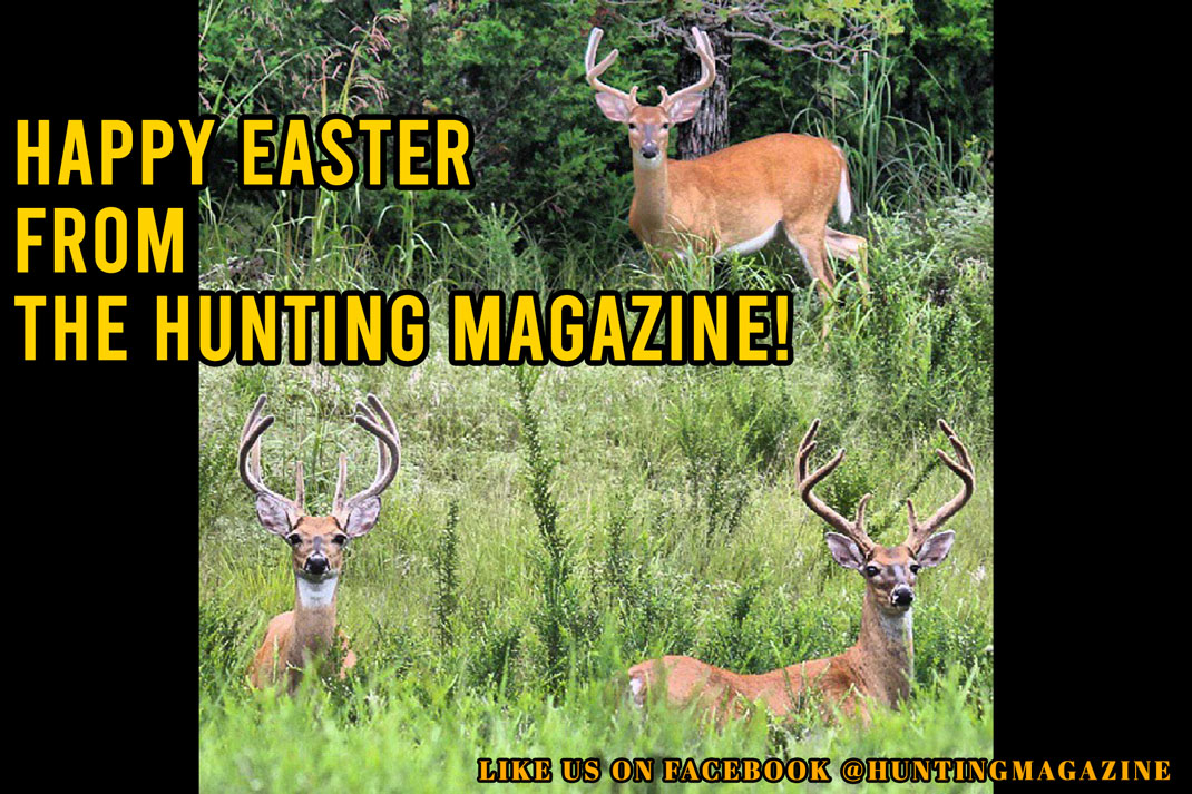 Meme: Happy Easter from the Hunting Magazine