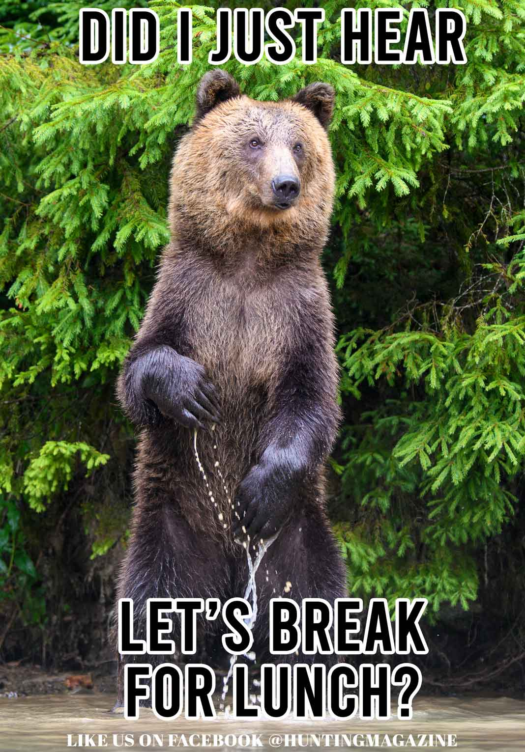 Funny Hunting Meme: Did I just hear lets break for lunch? | Hunting Magazine